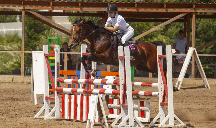 Чемпионат и первенство Кузбасса по конному спорту состоялись в Берёзовском