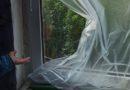 Задержан 21-летний берёзовец, укравший окно