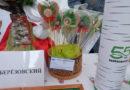 Сувениры из Берёзовского. Подведены итоги полуфинала регионального конкурса