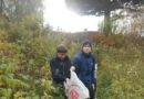 Молодые добровольцы убрали мусор вокруг легендарного кедра в Берёзовском